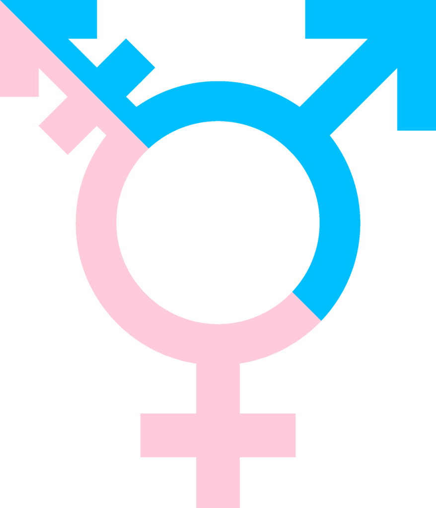 Transgender Day of Remembrance in the EU